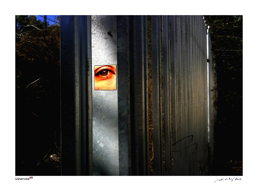Observed_04_prints_gran